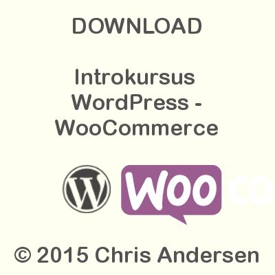 Download Intro WordPress - WooCommerce